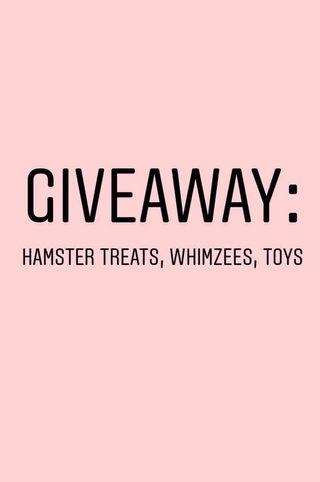 Giveaway: Hamster Supplies