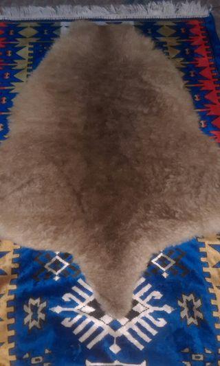 Tasmania Genuine Kangaroo Fur Leather Kulit Kanguru Australia Antik Langka