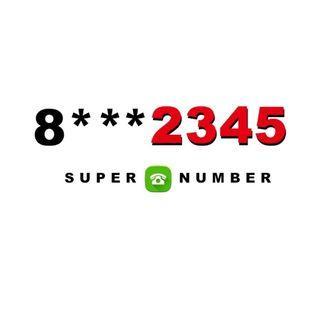 Golden Number [8***2345]