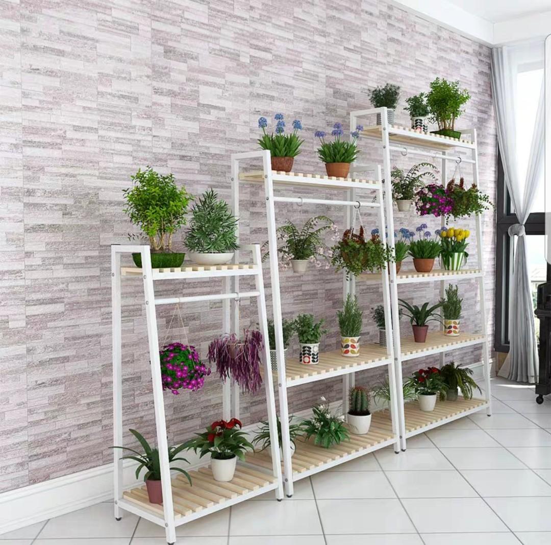 Plant Shelves/ Rack5