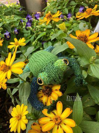 手織靑蛙🐸公仔