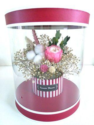 Eternal preserved Austin pink white rose & cotton in red flower box
