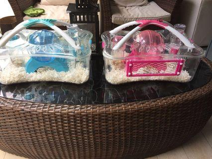 🚚 Hamster Home  (Blue)- Still Available