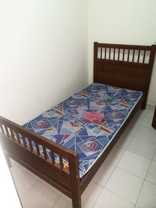 Almost new single bed !!! CHEAP!!!