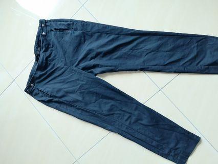 Zara Pants in Dark Blue