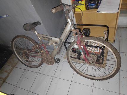 Sepeda MTB Aleoca Noramica Merah