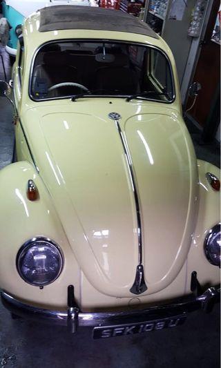 Volkswagen Beetle 1966 Sunroof (COE till 08/2021)