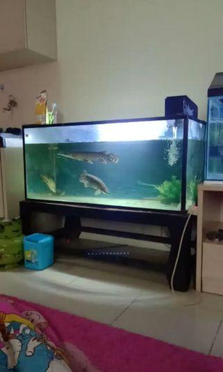Aquarium fullset 150x50x50
