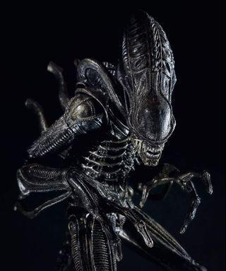 "NECA ALIENS Genocide - Warrior Xenomorph8"" (Black) Alien Predator McFarlane"