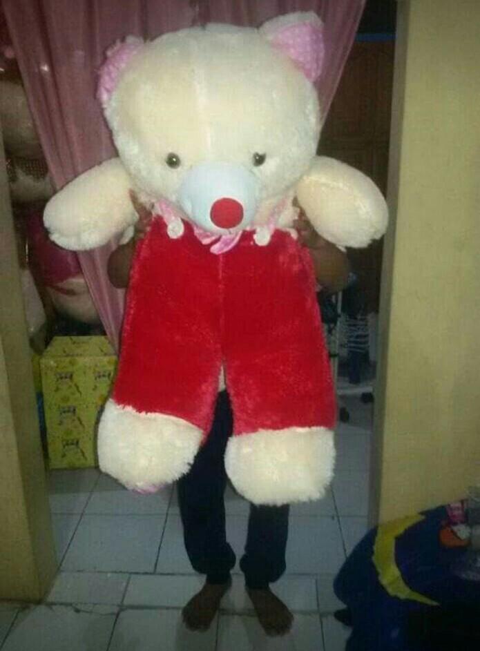 #BAPAU Boneka Teddy Bear
