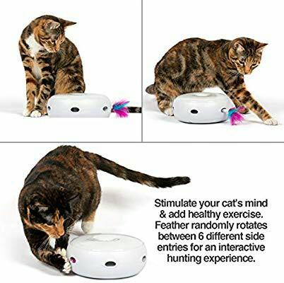PetFusion Ambush Interactive Cat Toy with Electronic Rotating Feather. (Smart Modes, Nighttime Light, Batteries Included) …