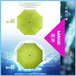 🚚 🆕新型摺疊傘💕遇水就發🌸