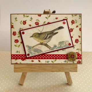 🚚 Handmade Card - Bird