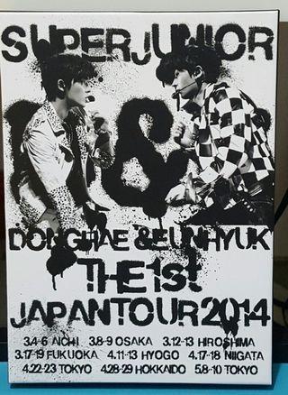 Super Junior D&E 日本巡迴DVD