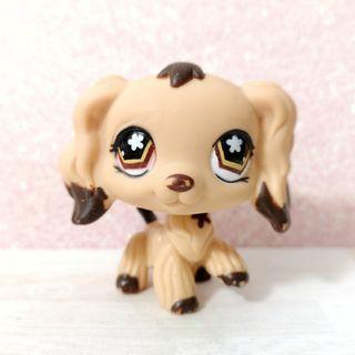 Littlest Pet Shop lps Cocker Spaniel (flower eyes)