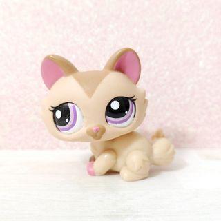 Littlest Pet Shop lps uncommon  crouching cat / maine coon