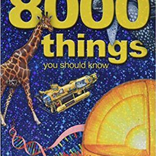 8000 things you should know by Miles Kelly