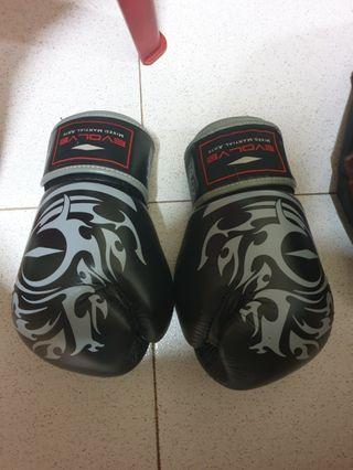 Evolve boxing gloves
