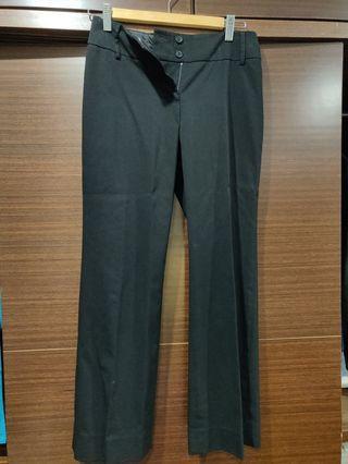 西裝褲 適合 上4班族 知性風格 直筒褲