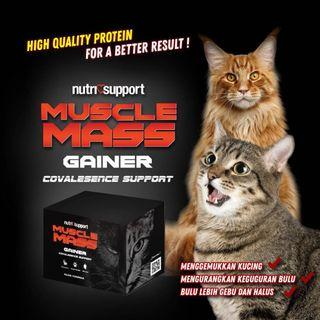 Mass Gainer Nutri Support