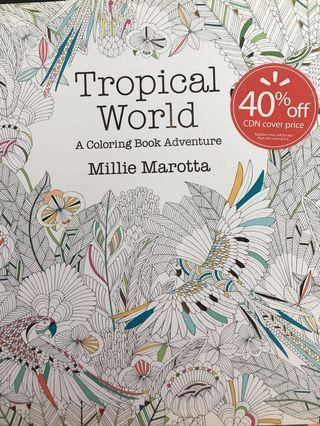 6 Adult colouring books