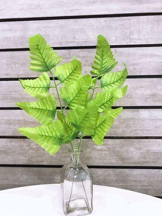 PVC Green Leaf - as product background