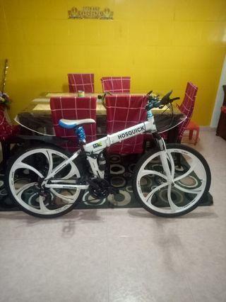 hosquick bicycle