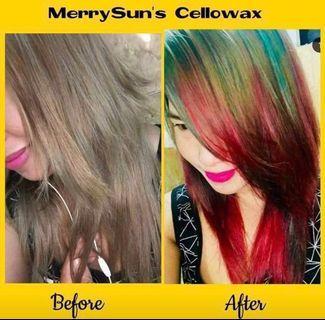 CeloWax Merry Sun
