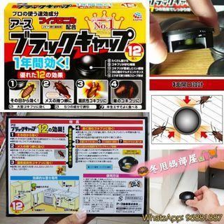 日本🇯🇵Earth 升級版小黑帽曱甴誘捕屋 (一盒12個)
