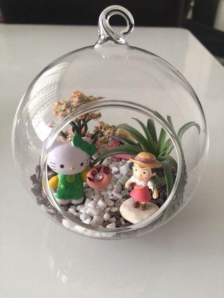 🚚 Hello Kitty & Mei air plant terrarium