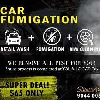 🦗 3 in 1 Car Fumigation Pest removal deal