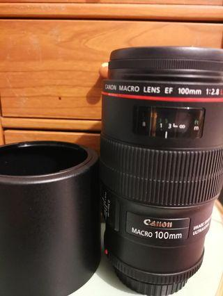canon Marco Lens EF 100mm f/2.8