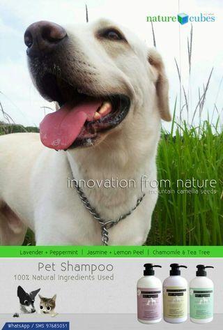 🚚 100% Natural Pets Shampoo