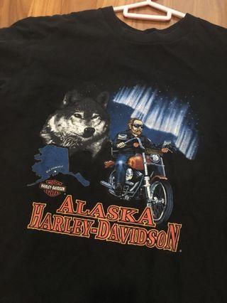 Authentic Harley Davidson vintage shirt