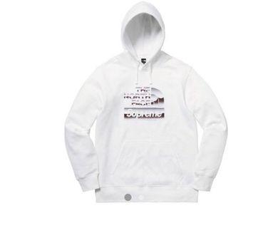 Supreme The North Face Metallic Logo Hooded sweater