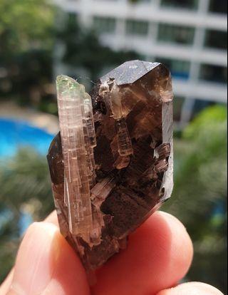 Watermelon Tourmaline w/ Double Terminated Smokey Quartz Crystal