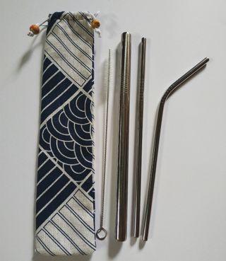 Eco Stainless Straw (Set)