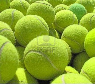 Used tennis balls x50