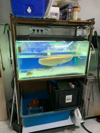 3ft fish tank with wrought iron 3 tiers stand
