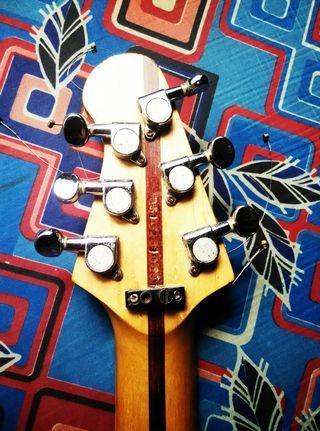 Guitar peavey custom malaysia