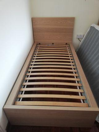 Malm Single Bed Frame, White Stained Oak Color