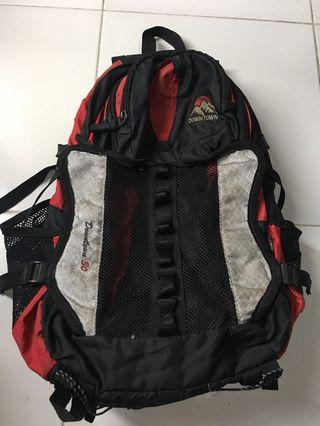 Downtown Backpack/Cerrier