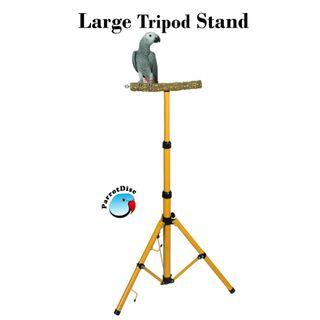 Large parrot bird tripod stand