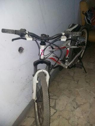#BAPAU sepeda phoenik