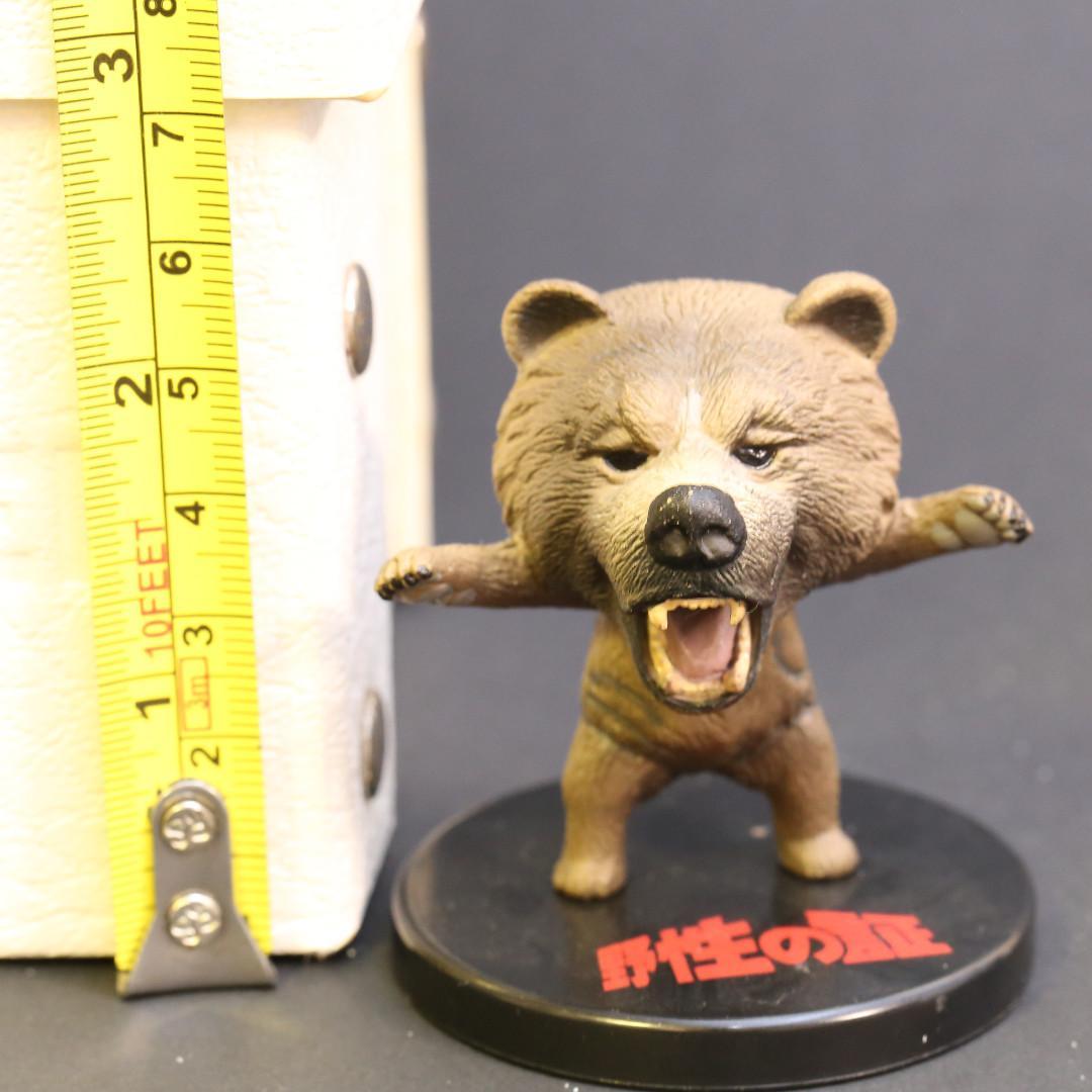 野性之証 熊