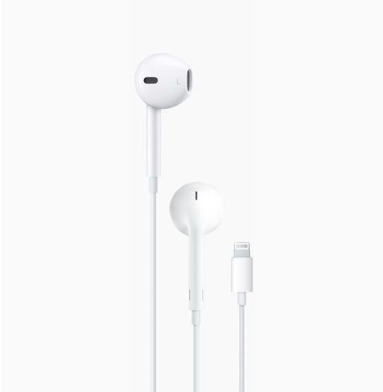 Apple Earphones (Brand New)