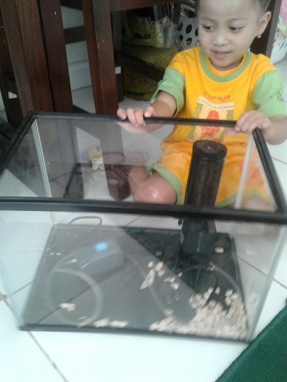 #BAPAU aquarium