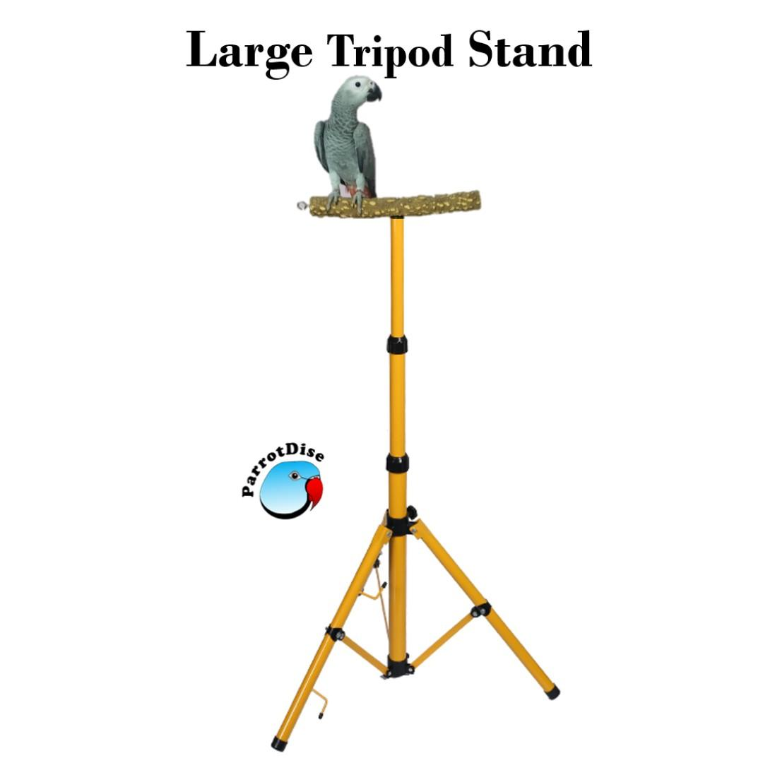 Large parrot bird tripod stand
