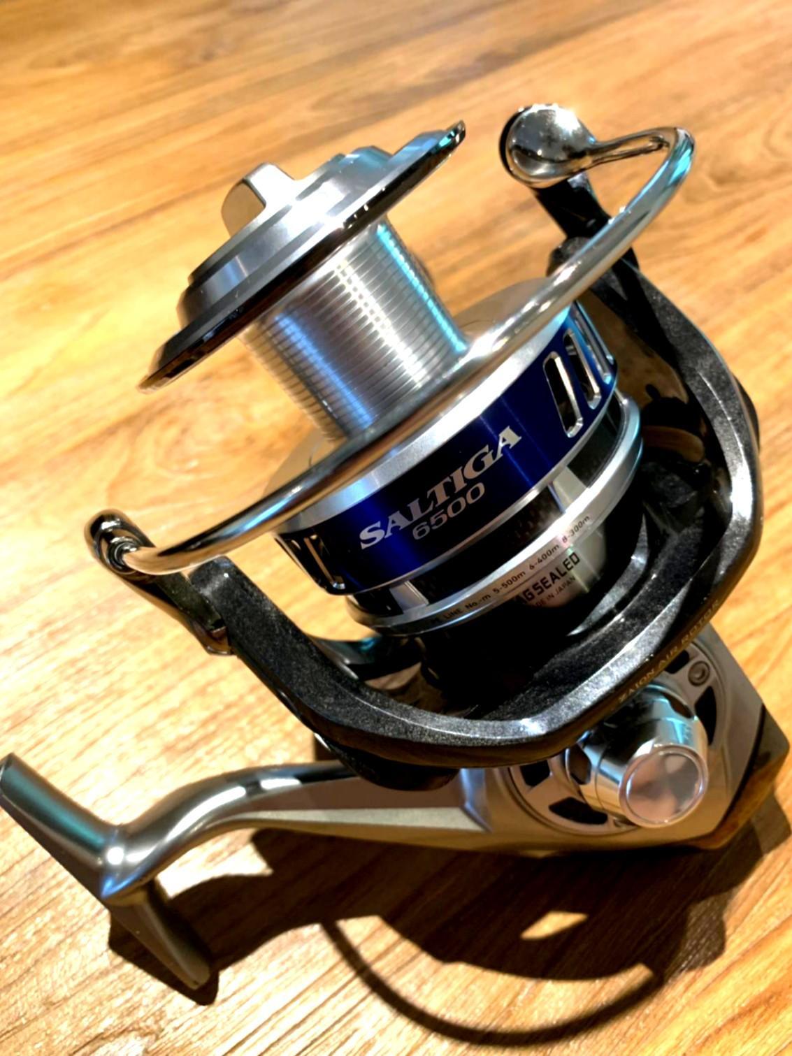 Saltiga 6500 (2010)