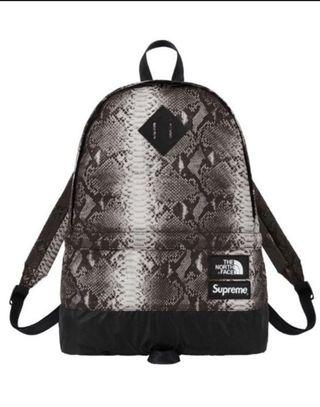 Supreme x the north face bagpack
